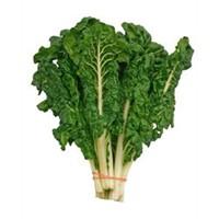 Vücuda Kuvvet Veren Yeşillik