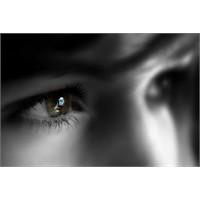 Göz Yaşınızı Dökmeyi Bırakın