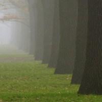 Doğa Yürüyüşü Ve…