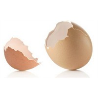 Yumurta Kabuğu Çöp Değildir!