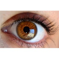 Göz Seğirmesi Nelerin Habercisi?