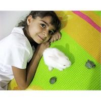 Çocuklarda Hayvan Ve Tabiat Sevgisi