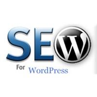 En Başarılı Wordpress Seo Eklentileri