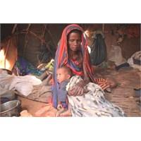 Bilinmeyen Ülke Nijer