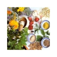 Doğal Afrodizyak Bitkiler Ve Besinler