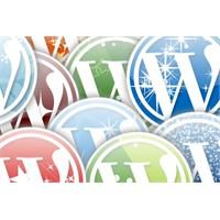 Wordpress Tema Ve Eklenti Kurulumu!