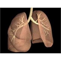 Akciğer Kanserinin En Önemli Nedeni