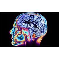 Beyin Stres Direnci