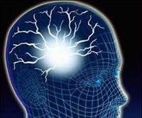 Beyin Gücünüzü Arttırmak Sizin Elinizde