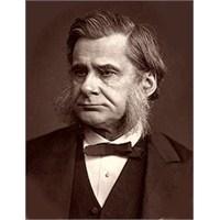 Adalet, Çıplak Beyinler,thomas Huxley