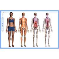 Eğitimde Google Body Uygulaması