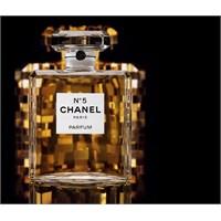 Parfüm Ailesi Ve Parfüm Notaları Nedir?