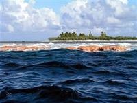 Okyanus Dalgalarından Elektrik Enerjisi