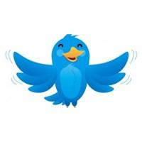 Sitenize Uçan Twitter Kuşu Ekleyin