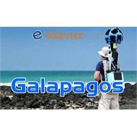 Galapagos Takımadalarında Google Harekâtı!