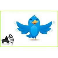 Yeni Trend: Sesli Tweet