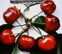 Hangi Meyve Aspırınden 10 Kat Daha Etkılı