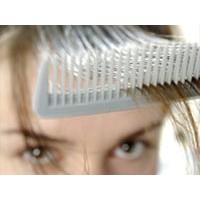 Saç Dökülmesini Önleyen Bitkiler