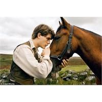 Savaş Atı - War Horse