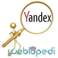 Yandex'in Özel Arama Motoru Servisi!