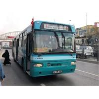 Bir İstanbul Fenomeni 500t