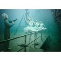 Yüzey Altında Yaşam - Andreas Franke