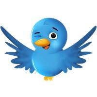 Twitter'da Follower Arttırmak