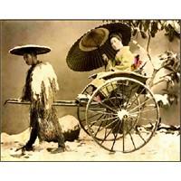 Bahar Karları- Yukio Mişima
