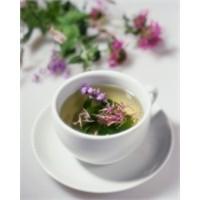 Bitki Çaylarının Gizli Faydaları
