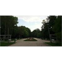 Zapaden Park - Sofia, Bulgaristan