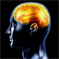 Beyni Keskinleştiren 10 Roman!