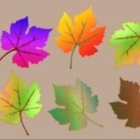 Mevsime Göre Dekorasyon Yapmak !