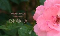 Meşhur Isparta Gülü Hakkında Meşhurlardan Sözler,