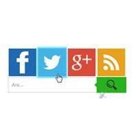 Blogger Metro Tarzı Sosyal Paylaşım Butonları