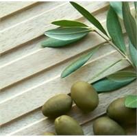 Zeytin Yaprağı İksiri