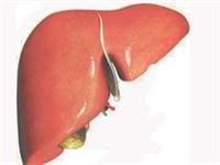 Ömer Coşkun Karaciğer Yağlanması