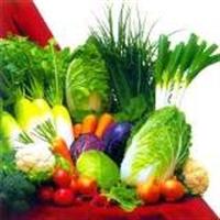 En Sağlıklı Diyet Hangisi