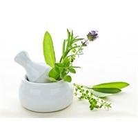 Zayıflamaya Yardım Eden 7 Şifalı Bitki