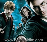 Harry Potter And The Deathly Hallows: Part I 2010