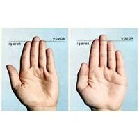Uzun İşaret Parmağı Kanser Ve Kalp Habercisi