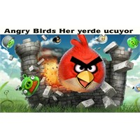Angry Birds Her Yerde Uçuyor