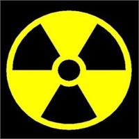 Mesele Nükleerse, Bir Oydan Fazlasın