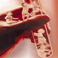 Tüp Bebek İsteyenler Sigara Yasak