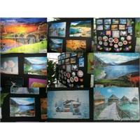 Kabartma Resimlerimiz (6.Sınıflar)
