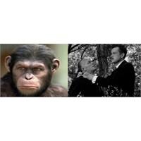 Maymunlara Yönetmen, Yabancı'ya Yeniden Çevrim