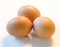 Yumurta Saklarken