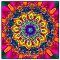 Renklerin Dansı Çiçek Dürbünü (Kaleydoskop)