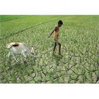 Dünyada Su Azalıyor Mu?
