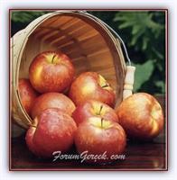 Elma Sirkesiyle Nasıl Güzelleşirsiniz?