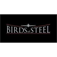 Birds Of Steel - Yeni Video